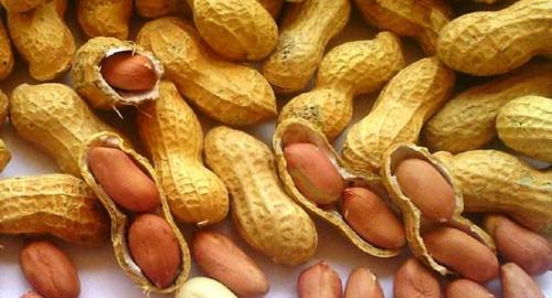 Salute, proprietà e benefici delle arachidi: 4 buoni motivi per implementarle alla tua dieta